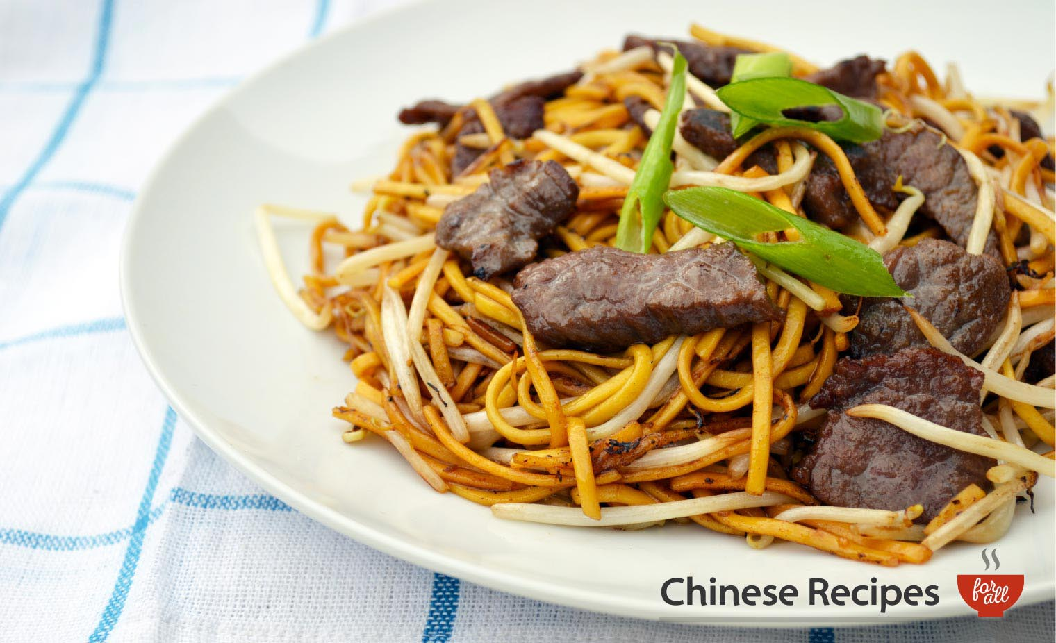 Beef Chow Mein Noodles - Chinese Recipes For All