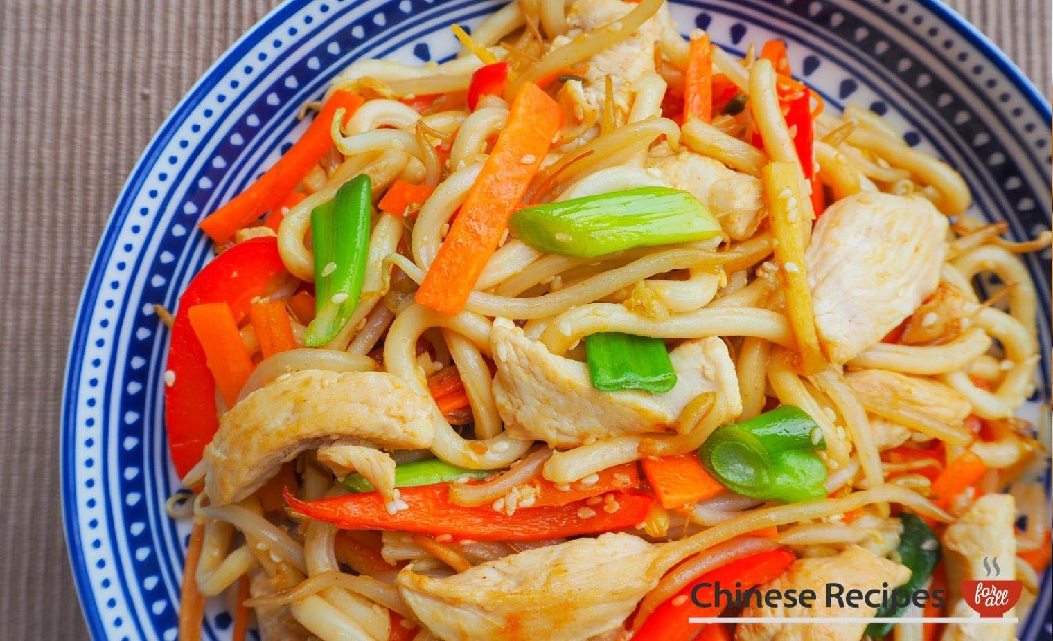 Chicken Udon Noodles with Ginger and Sesame Seeds